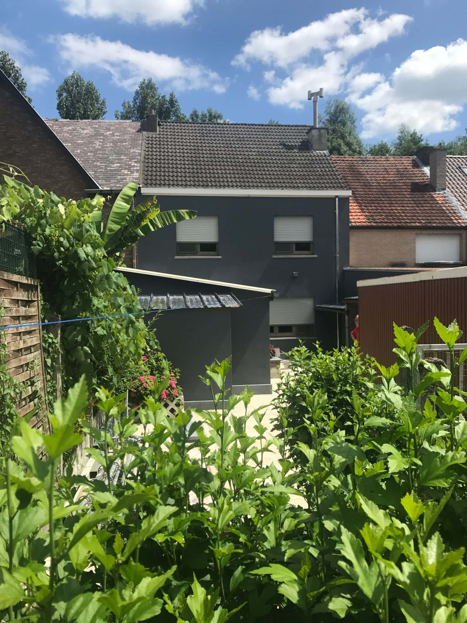 Rijhuis renovatie van gevels en buitenbepleistering te Aalst Tony Boel